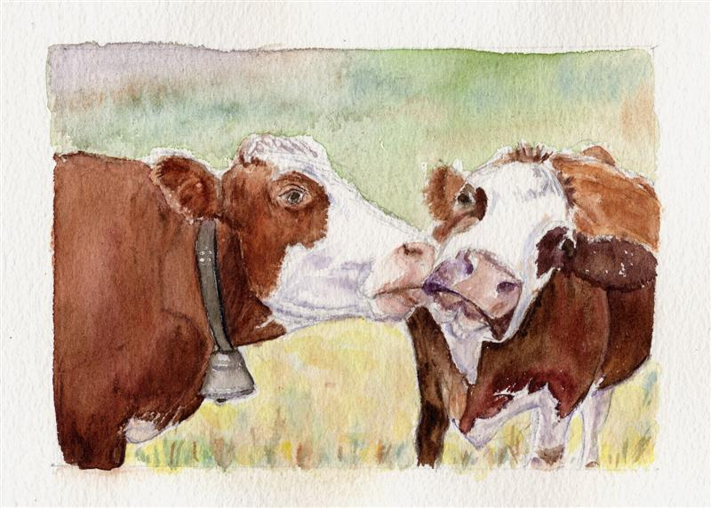 Vaches tendres au Col du Joly - Aquarelle copyright Christiane Rau, 11-2011