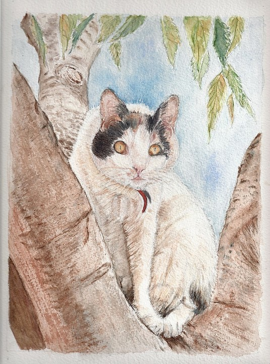 Chat de Ventabren, aquarelle. Copyright Christiane Rau, 2009-10